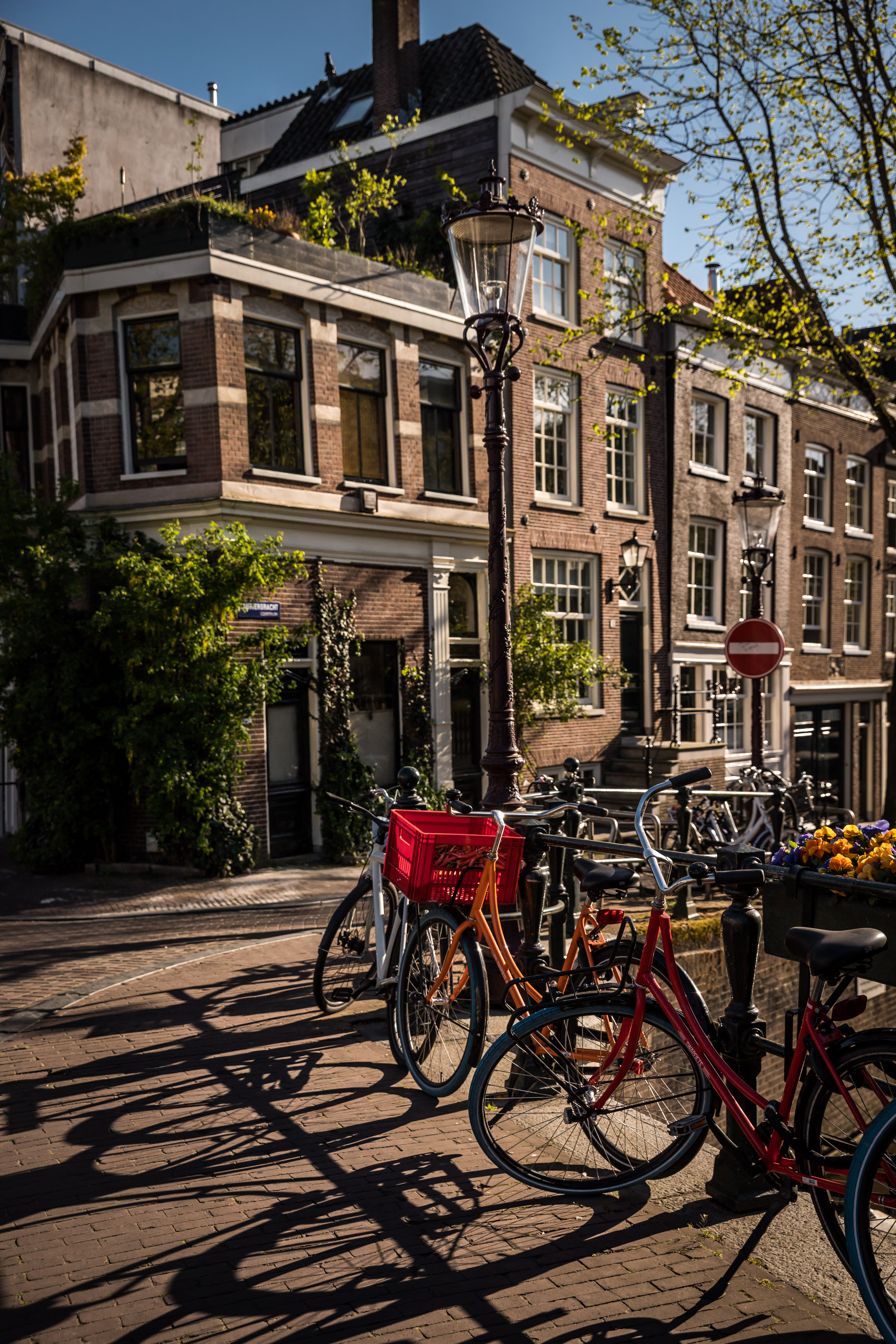 Zomers en Muisstil Amsterdam (Ashkan Mortezapour Photography) (4 of 6)